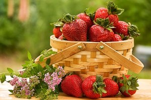 season-for-strawberries