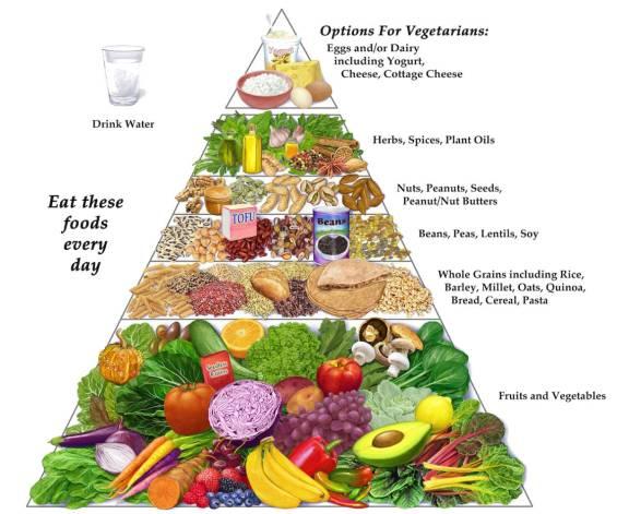 Vegetarian-Diet-Vegetarian-Vegan-Diet-Pyramid.jpg