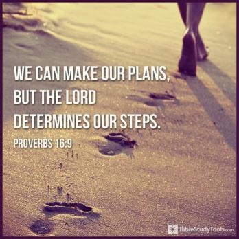 31471-plans-steps-proverbs16-9.png.jpeg