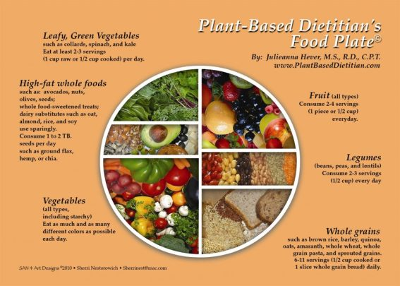 PBD-Food-Plate-1-1024x732.jpg