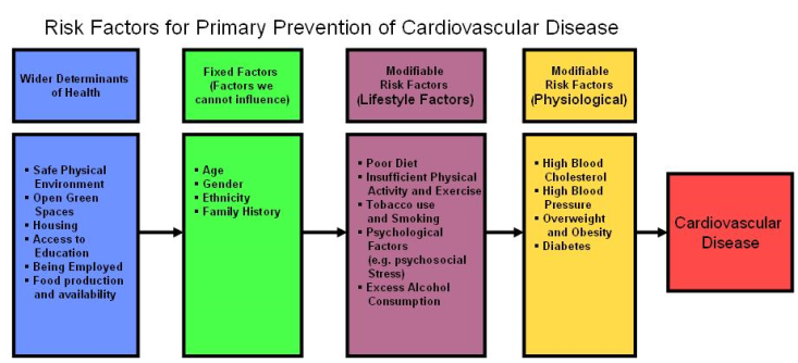 LWW - Conditions - CVD Risk Factors.png