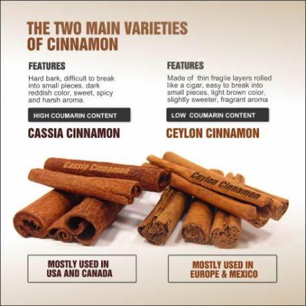 78bbaccdf2c18f2a3349caedafd63f2d--saigon-cinnamon-ceylon-cinnamon.jpg