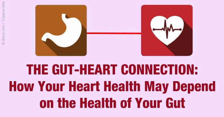 gut-heart-connection-fb.jpg