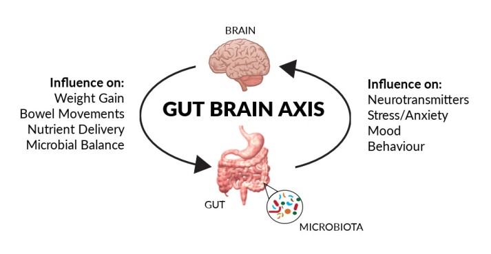 gut-brain-axis.jpg
